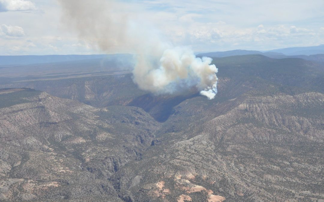 Buttermilk Fire Info and News