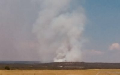 Wildfire in West End of Montrose County