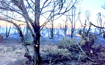 Nelson Ditch Fire Update