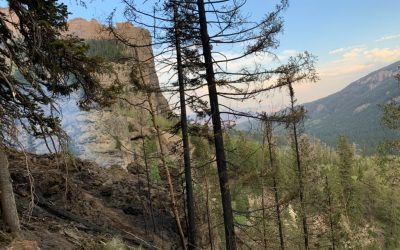 Mill Creek Wildfire